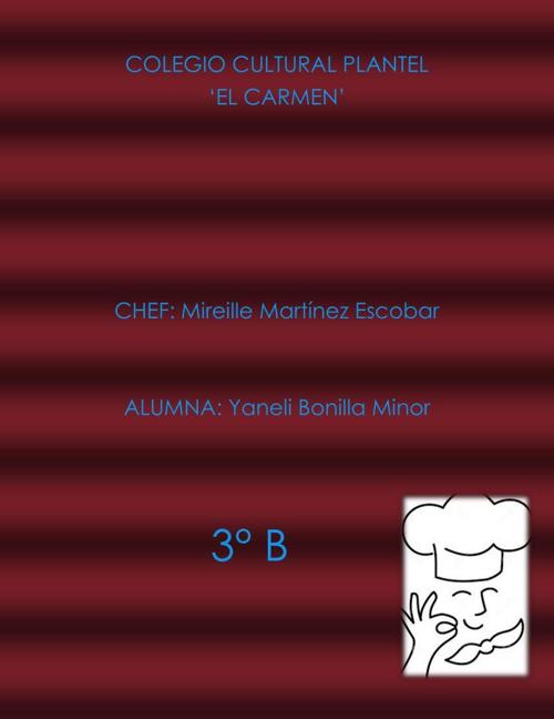 Recetario Yaneli Bonilla M 3_B