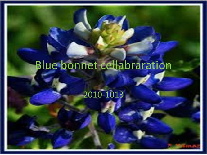 Blue Bonet Celabration