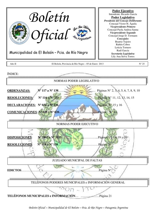 Boletín Oficial Nº 25 Diciembre 2012