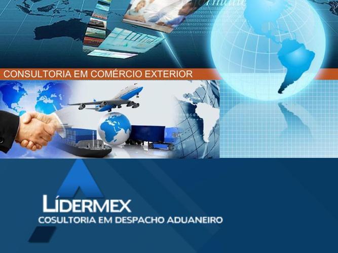 INSTITUCIONAL LIDERMEX