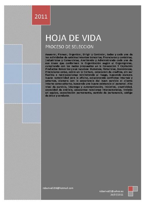 New Flip HOJA DE VIDA