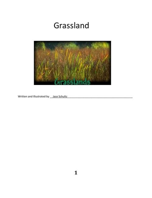 Jace Grassland