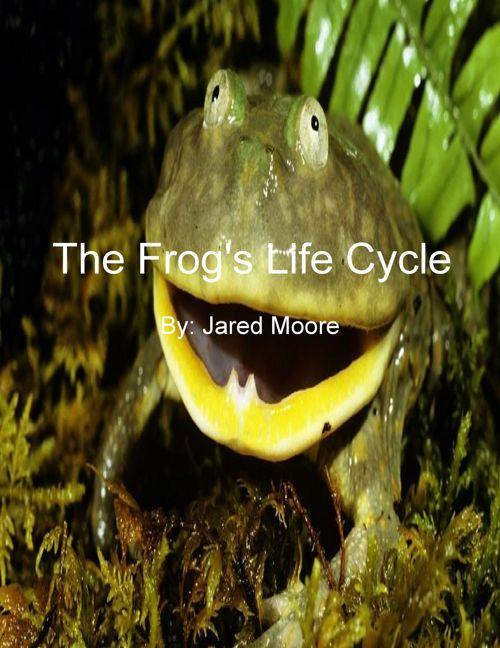 Frog - Moore