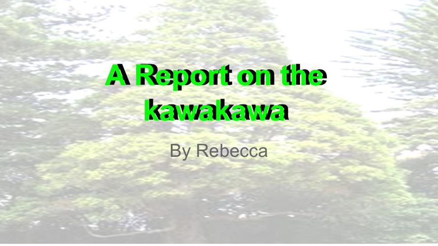 Rebecca Report on trees  (1)
