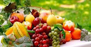 FRUITS OF THE ALPHABET