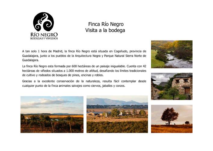 Visitas Bodega Río Negro