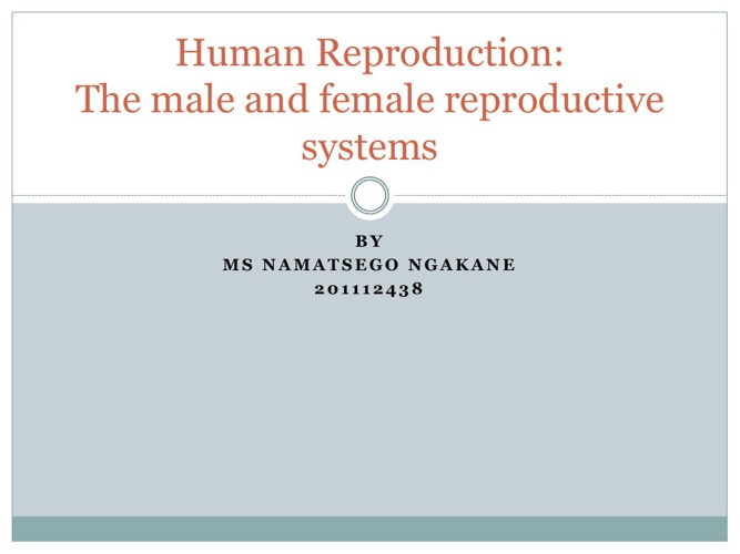 Copy of Human Reproduction: The male and female reproductive org