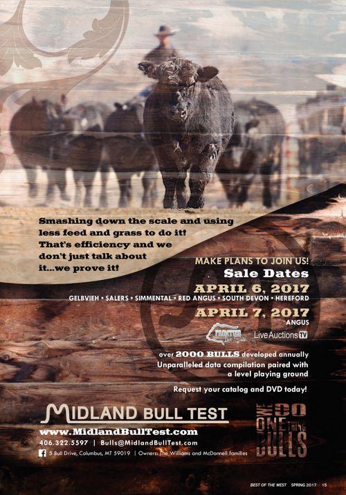 Midland Bull Test 2017