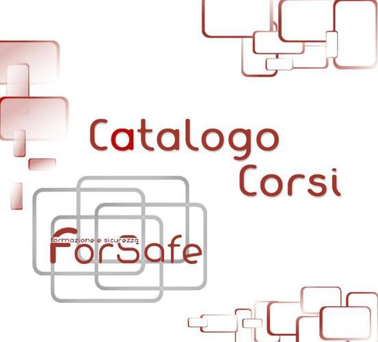 Catalogo Forsafe
