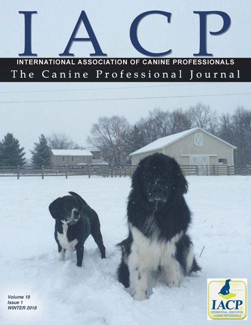 CPJ_Winter-2018-web-Final3
