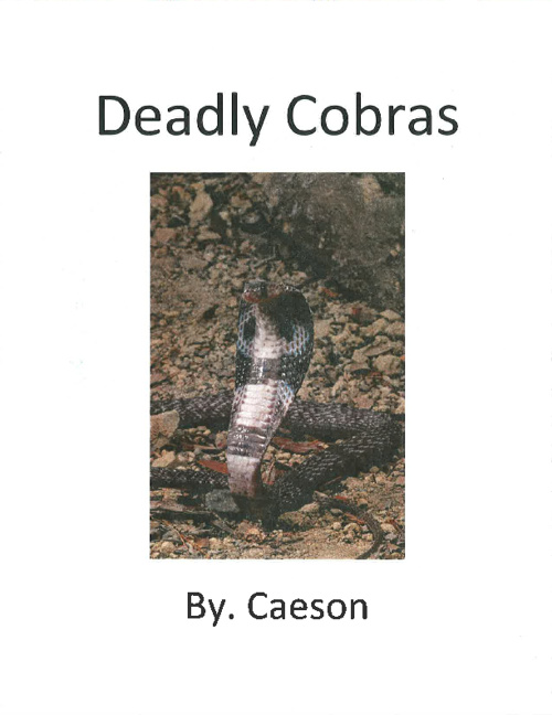 Cobras by. Caeson