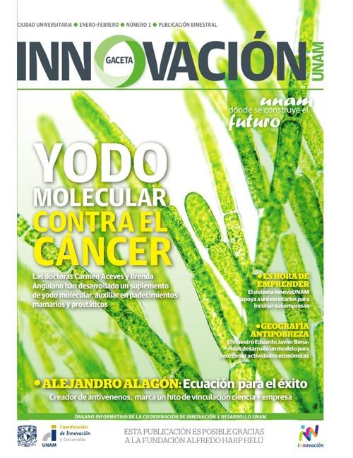 Gaceta Digital Innovación. Edición 1.