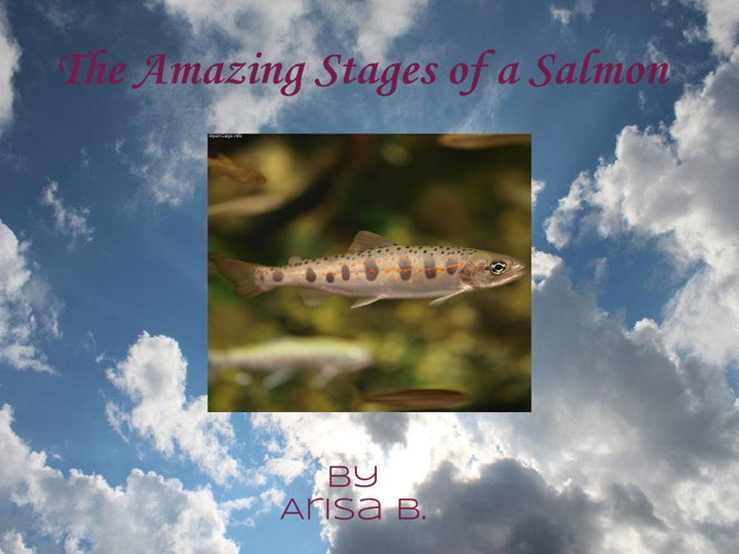 The Amazing Stages of a Salmon