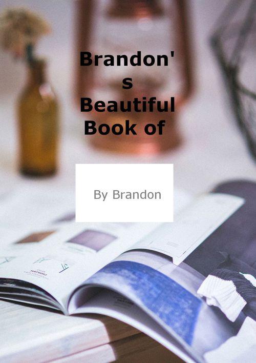 Brandon's Flipsnak