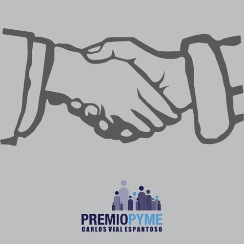 Premio PYME Carlos Vial Espantoso 2013