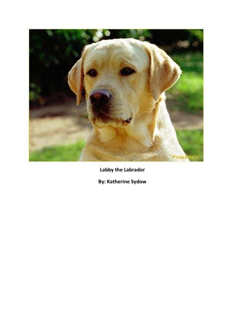 Labby the Labrador