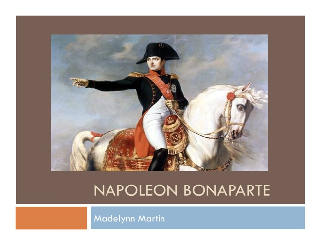 NEW Napoleon Bonaparte