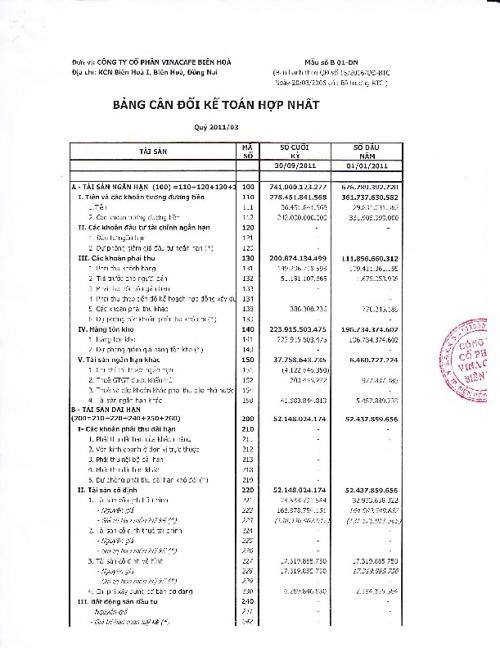 VCF Báo cáo tài chính 9 tháng 2011