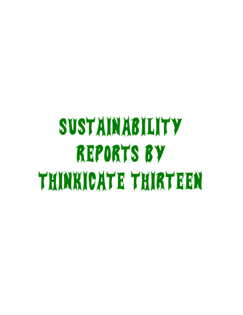 Room 13 Sustainability Reports Term 2 2012