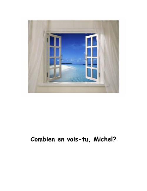 Combien en vois-tu, Michel?