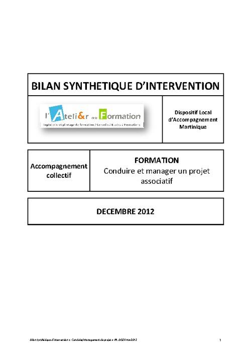 Bilan synthétique DLA Martinique