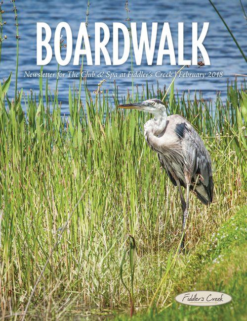 Boardwalk Fiddlers Creek February