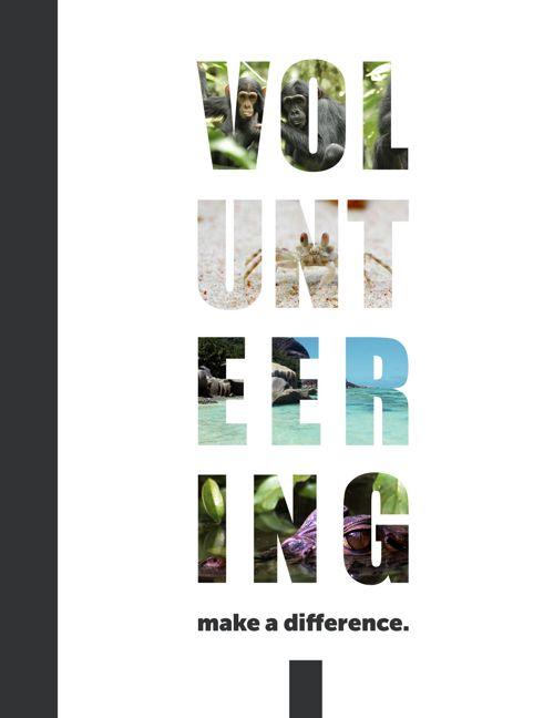 Volunteering at MC