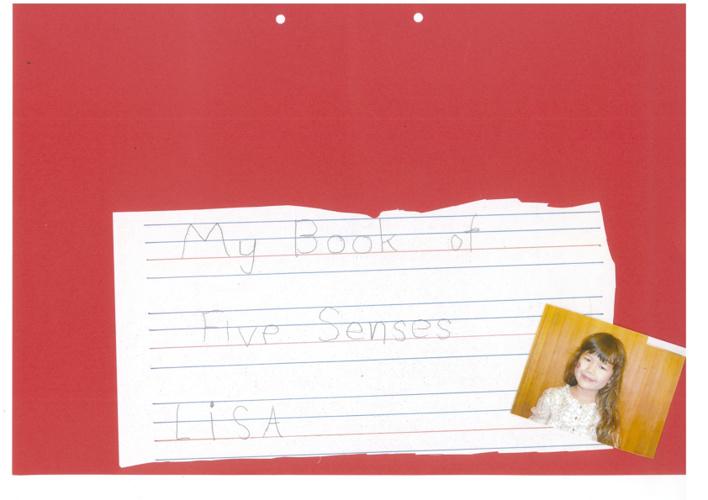 LisaSensesBook