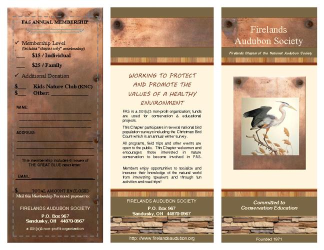 FAS brochure