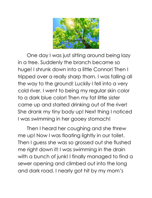 Ms. Hamricks Class Narrative Story 2013