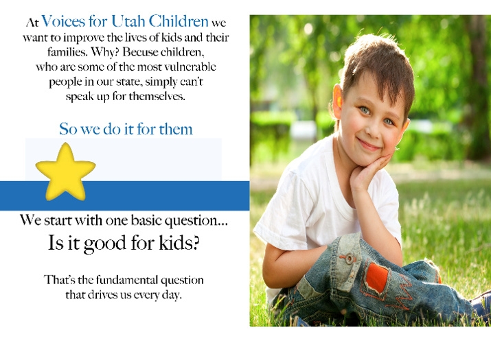 Voices for Utah Children 2013 Brochure