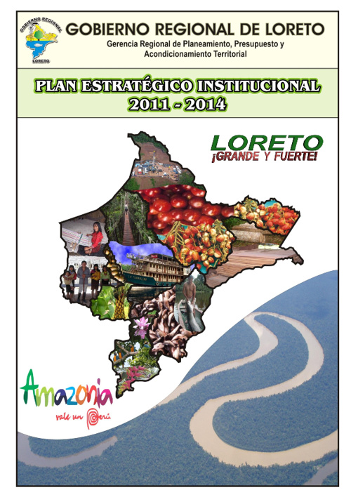 PLAN ESTRATÉGICO INSTITUCIONAL 2011-2014