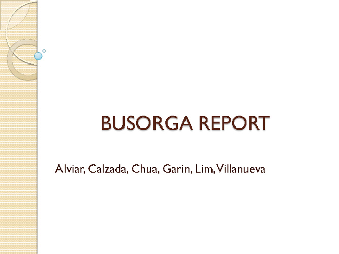 Busorga Report