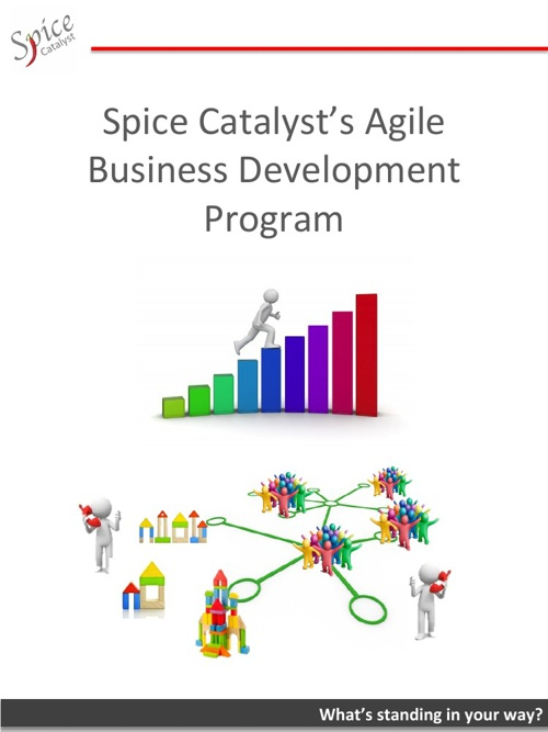 Business Development Program