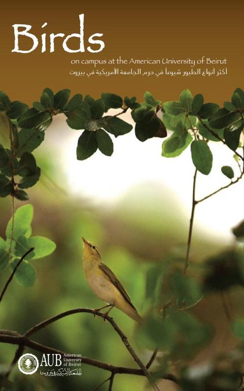 abdallah- book