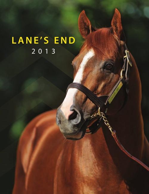 Lane's End Farm Brochure