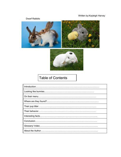 InformationalDraft-KayleighHarvey (3) (1)