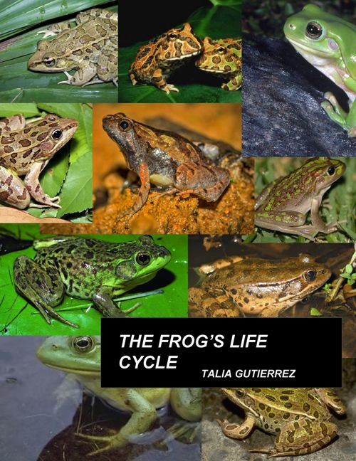 Frog Book - T. Gutierrez