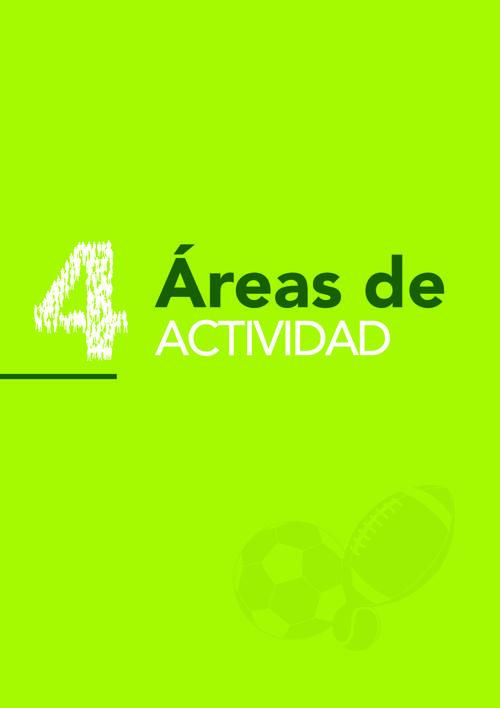 4. AREAS DE ACTIVIDAD