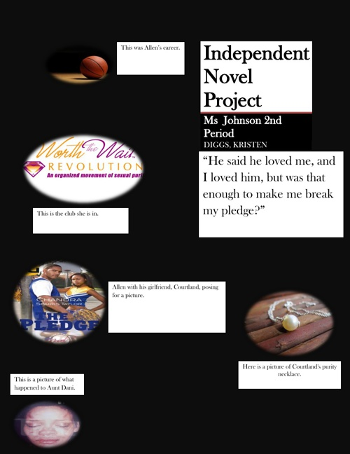 Independent Reading Novel Project