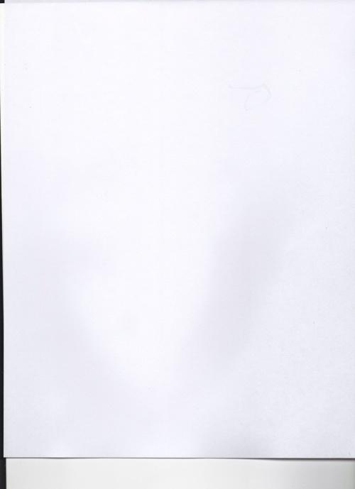 pagina en blanco001