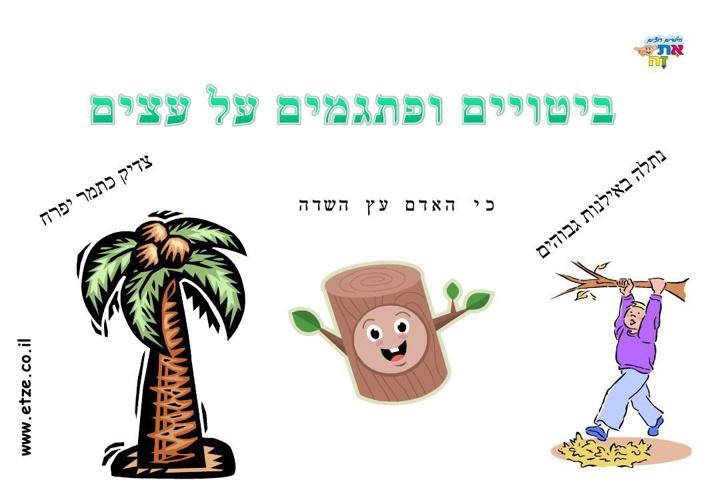 pitgamim_tree