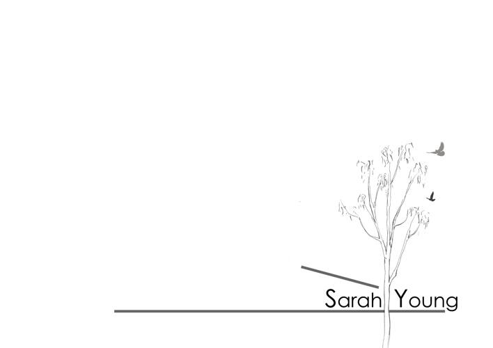 Sarah Young Portfolio