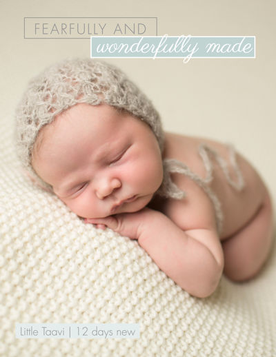 Jennifer Connelly Photography - Newborn Session Guide