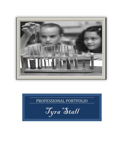 Stall Professional Portfolio