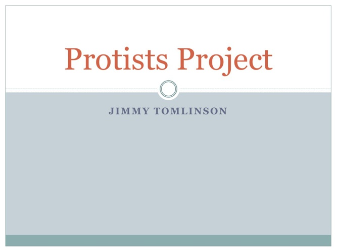 Protists Project