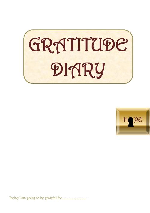 Gratitude Diary Test