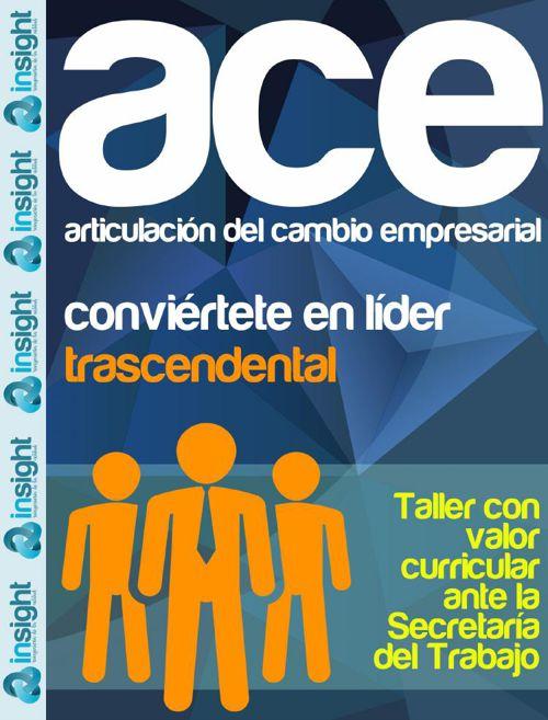 ACE | Articulación del Cambio Empresarial