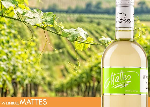 Weinbau Mattes Folder 2012