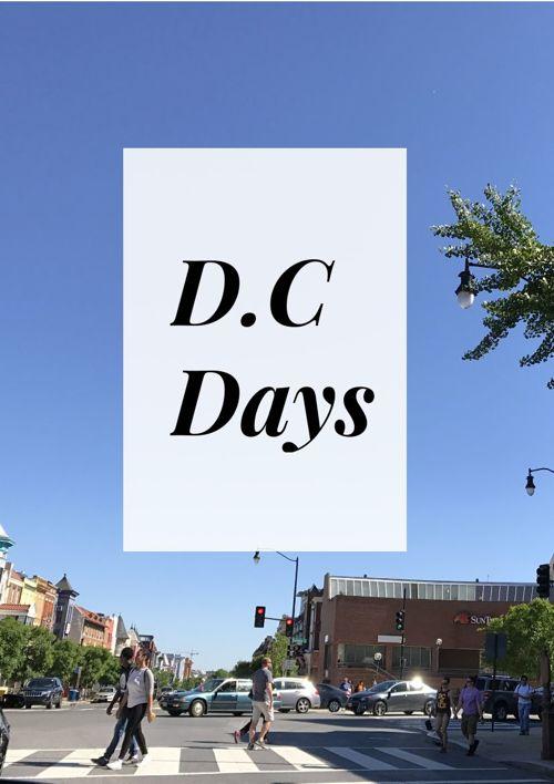 D.C Days LookBook